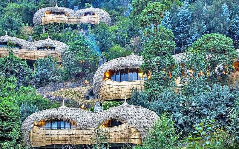 Bisate Lodge - Volcanoes N.P Rwanda