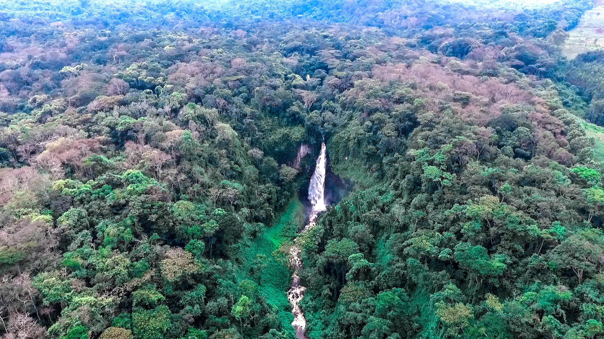 Aerial View of Kahuzi Biega National Park Congo